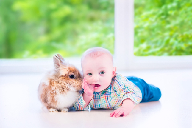 baby-with-rabbit