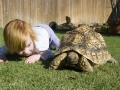 girl_with_tort